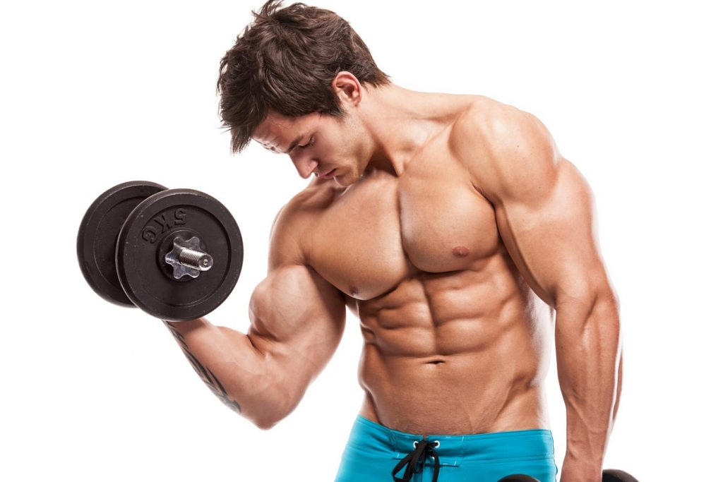 muscle builder steroids